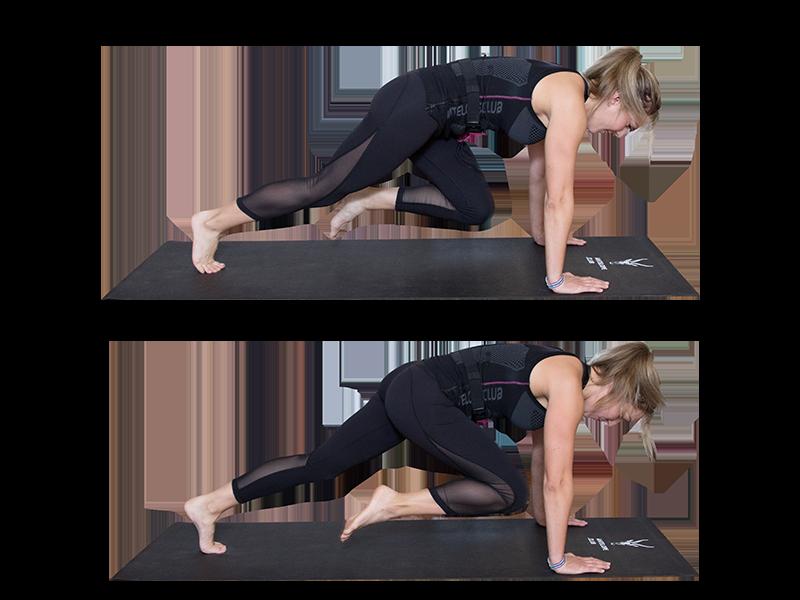 """Auf dem Bild ist eine junge, sportliche Frau zu sehen, die ein EMS Training durchführt. Es ist eine Bewegungsabfolge der Übung """"Mountain Climbers"""" zu sehen. Es ist eine Serie bestehend aus zwei Bildern, die untereinander angeordnet sind. Die Frau trägt die EMS Weste von ANTELOPE und führt die EMS Übung auf einer schwarzen Fitnessmatte aus. Am unteren Rand der Fitnessmatte ist das ANTELOPE Logo zu sehen. Die Frau trägt das ANTELOPE.TANK-TOP, eine schwarze Trainingshose und ist Barfuß. In Abbildung 1 ist die Frau im Armstütz zu sehen. Die Arme sind gestreckt und die Handflächen stützen vom Boden ab. Das linke Bein ist nach hinten gestreckt, die Zehen stützen vom Boden ab. Das rechte Bein zieht angewinkelt in Richtung Brust. In Abbildung 2 wird die gleiche Übung mit der anderen Seite abgebildet. Hier ist nun das rechte Bein nach hinten gestreckt und das rechte Bein zieht in Richtung Brust."""