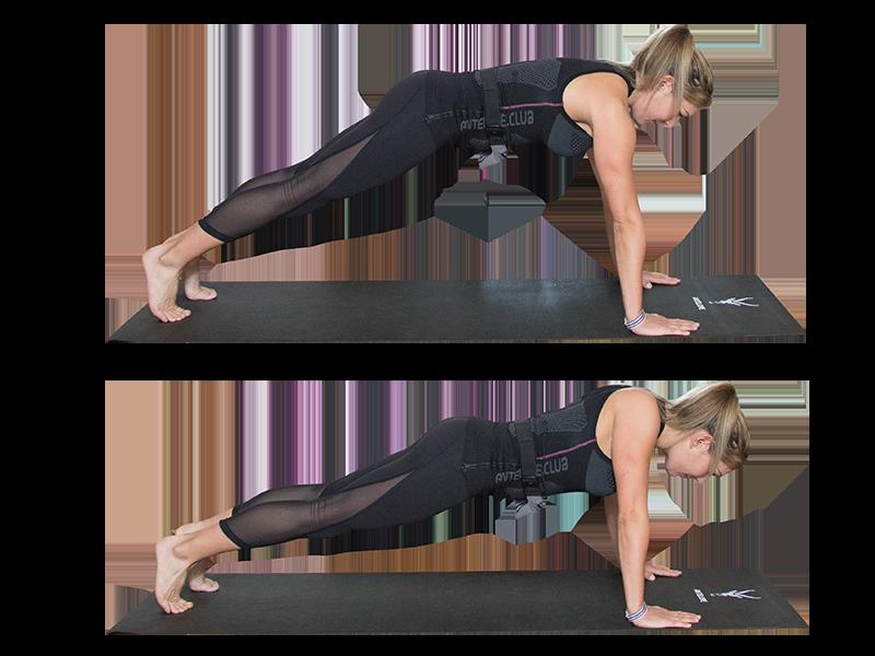 """Auf dem Bild ist eine junge, sportliche Frau zu sehen, die ein EMS Training durchführt. Es ist eine Bewegungsabfolge der Übung """"Shrugs"""" zu sehen. Es ist eine Serie bestehend aus zwei Bildern, die untereinander angeordnet sind. Die Frau trägt die EMS Weste von ANTELOPE und führt die EMS Übung auf einer schwarzen Fitnessmatte aus. Am unteren Rand der Fitnessmatte ist das ANTELOPE Logo zu sehen. Die Frau trägt das ANTELOPE.TANK-TOP, eine schwarze Trainingshose und ist Barfuß. In Abbildung 1 ist die Frau im Armstütz zu sehen. Die Arme sind gestreckt und die Handflächen stützen vom Boden ab. Ihr Körper bildet eine leichte Diagonale zum Boden. In Abbildung 2 sind die Arme leicht angewinkelt und die Ellenbogen zeigen nach außen. Ihr Blick ist zum Boden gerichtet."""